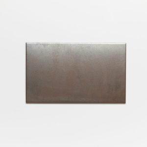 Vinson Bronze, 20×33