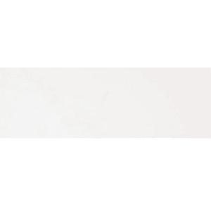 Blanco Nieve EX, 20×60